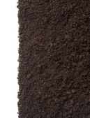 Soil or dirt texture isolated on white background — Stock Photo