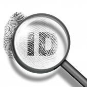 Fingerprint identification concept — Stock Photo