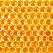 Honeycomb cells natural background — Stock Photo #61227889