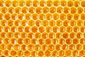 Honeycomb cells natural background — Stock Photo