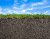 Soil, grass and sky nature background — Stock Photo