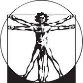 Da Vinci Vitruvian Man — Stock Vector