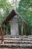 Coba Mayan Ruins — Stockfoto