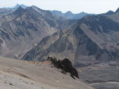 Weg zum Aconcagua — Stockfoto
