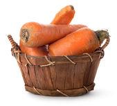 Delicious carrot — Stock Photo