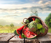 Watermelon and landscape — Stock Photo