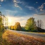 Autumn highway — Stock Photo #56570513