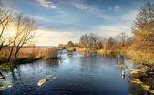 Ripple on the autumn river — Stock Photo