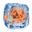 Shrimps in ice cube — Stock Photo #58705725