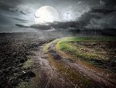 Pajaro y luna — Foto de Stock