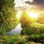Sunny evening — Stock Photo #65154583
