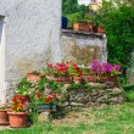 Old italian house — Stock Photo #52754503