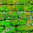 Texture of rock wall — Stock Photo #52754581