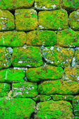 Texture of rock wall — Stock Photo