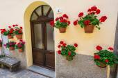 Old house decorated with flower pots — Stock Photo