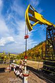Oil Pumpin Russia — Stock Photo