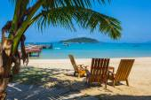 Tropical beach with deckchairs — Stock Photo