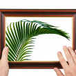 Photo Frame in  hands — Stock Photo #73910661