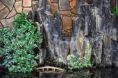 Pool with rocks, plants and  bridge — Stock Photo