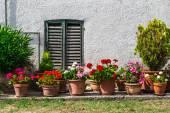 Fenster und Türen in alten Haus — Stockfoto