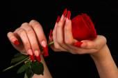 Vackra händer med fransk manikyr på svart bakgrund — Stockfoto
