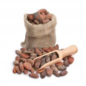 Cocoa beans before roast — Stockfoto