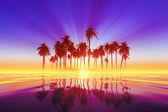 Coconut palms island — Stock Photo