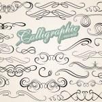 Calligraphic Design Elements — Stock Vector #57507469