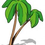 Palms — Stock Vector #72127105