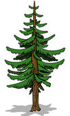 Coniferous Tree — Stock Vector