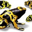 Yellow Banded Dart Poison Frog — Stock Vector #74639639