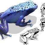 Blue Poison Dart Frog — Stock Vector #74639641