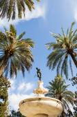 Seville Alcazar Garden — Stock Photo