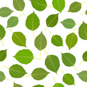 绿色的白桦树的叶子无缝 — 图库照片