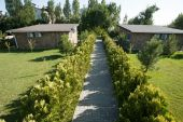 Pathway in summer garden — Stockfoto