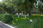 Deck chairs in summer garden — Stock Photo