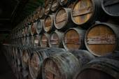Wine barrels stacked in the cellar — Stock Photo