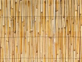 Background of natural cane  — Stock Photo