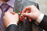 Holiday attire groom at a wedding. — Stock fotografie