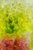Plant and Flower Gel — Stock Photo