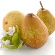 Three ripe pears — Stock Photo #53956551