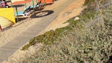 Plaży Falesia Albufeira, Portugalia — Wideo stockowe