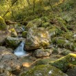 Waterfall in the portuguese national park of Geres — Stock Photo #65041267