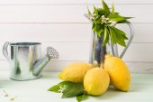 Limes and vintage metal retro watering cans — Stock Photo