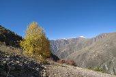 Аtumn landscape — Foto Stock