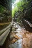 Flume Gorge Franconia Notch NH — Stock Photo