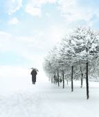 Silhouette unrecognizable person, leaving deep snowfall — Stock Photo