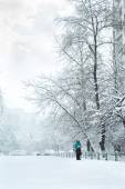 Snow storm in the Ukrainian capital — Stock Photo