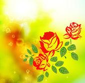 Roses fleurs — Photo