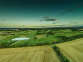 Aerial view of lush green farmland — Stock Photo